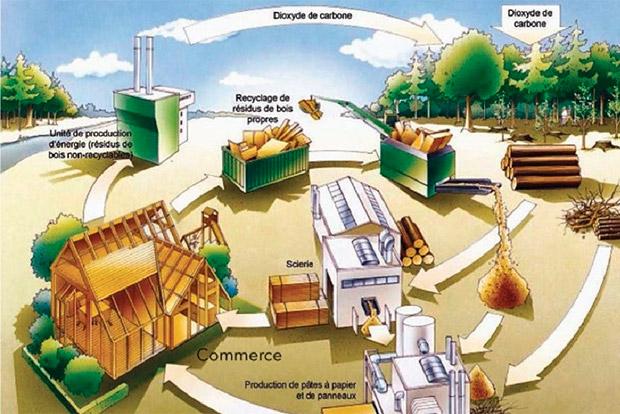 Futurobois acv analyse cycle vie produits bois construction